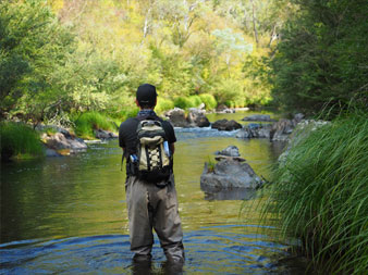 Top 5 Trout Fishing Tips - Victoria